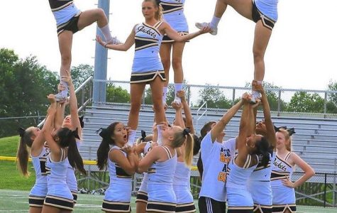 No Fear All Cheer