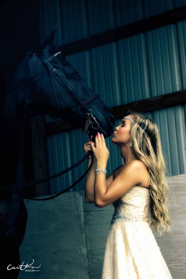 Heart to Horse