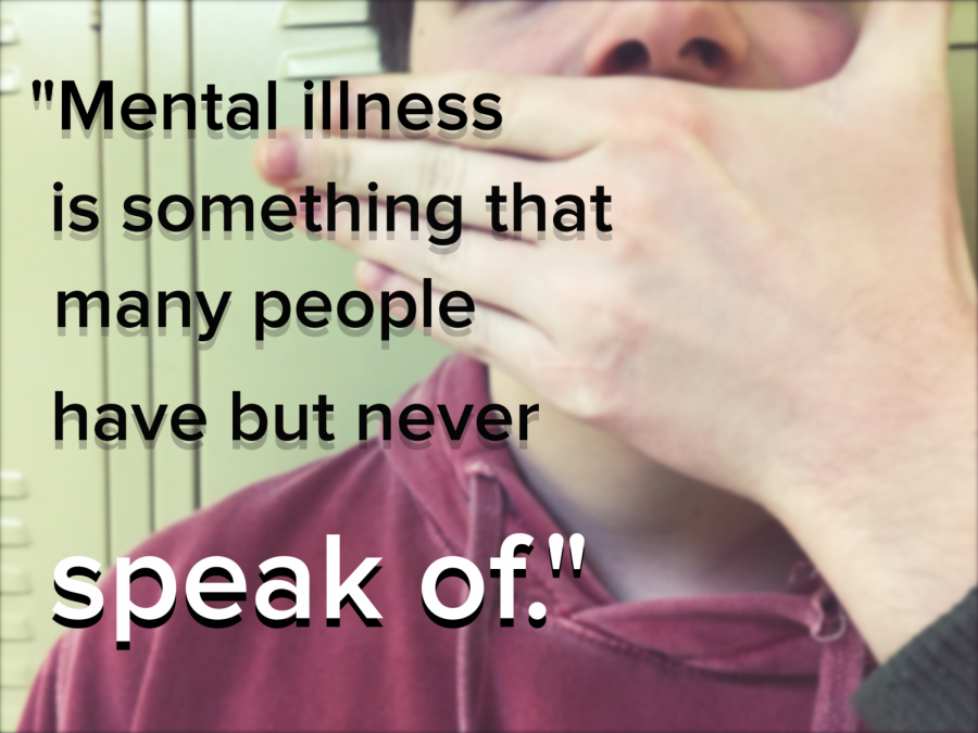 Mental Illness: Walk a Mile In Its Shoes