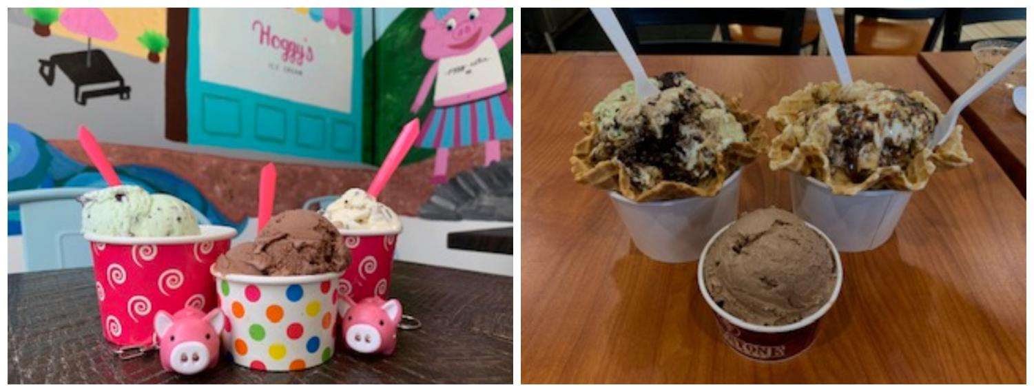 Cookie dough, chocolate, and mint chocolate chip flavored ice cream from both Hoggy's (Left) and Coldstone (Right).
