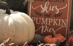 Pumpkin Spice & Everything Nice!