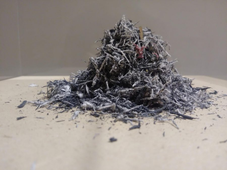 A pile of shavings from an art piece created by Bethany Collins as part of the Benediction Exhibit.