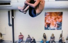 Diving into the WCHS Dive Team's Season