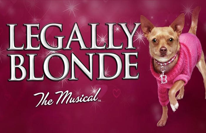 Cover+for+Legally+Blonde+the+Musical.+Photo+from+Google.