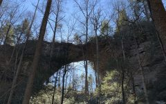 Comparing Two Popular Hiking Trails in the Red River Gorge Area