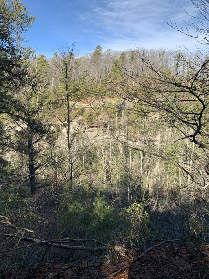 One of many beautiful lookouts along the hiking trail.