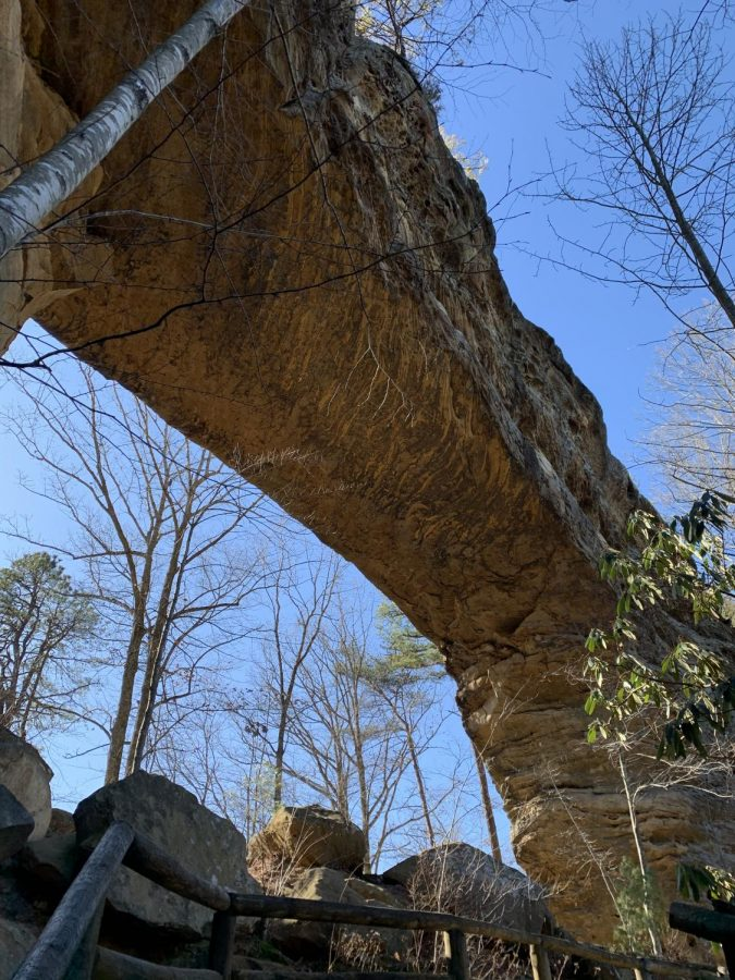 A view of Natural Bridge from underneath as you approach the final set of stairs.