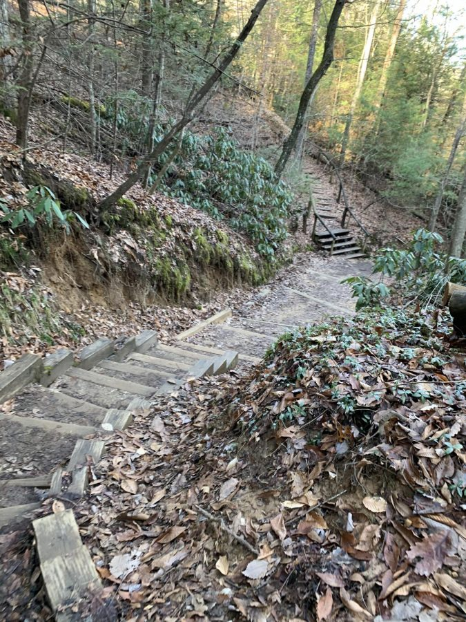 The steep steps on the way down from Natural Bridge.