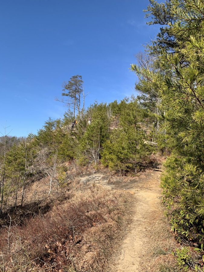 One of the larger and more popular lookouts along the trail.