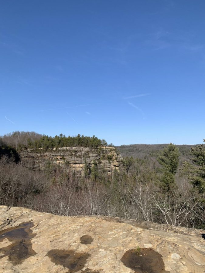 A beautiful view from the top of Natural Bridge.