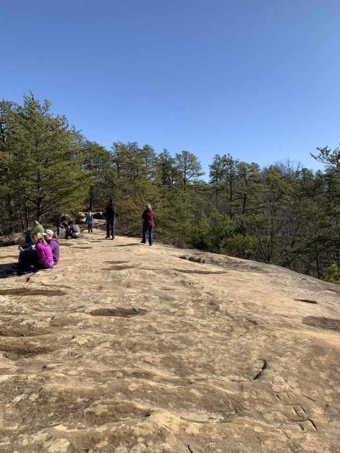 Another view of the top of Natural Bridge.