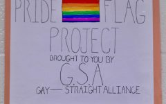 GSA: Schooling WCHS On Sexuality & Gender