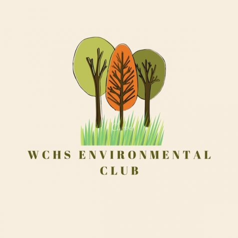 A New Woodford Extracurricular: Environmental Club