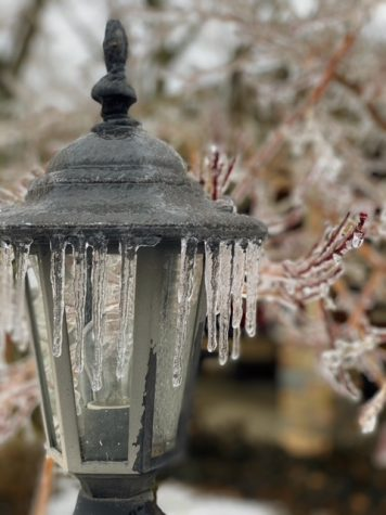 On February 11, 2021, Versailles, Kentucky was hit with the biggest ice storm we have had since 2009. Photo was taken in Versailles, Kentucky, at Natalie Kerr's house.