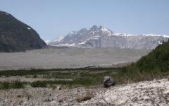 Carroll Glacier in Alaska.