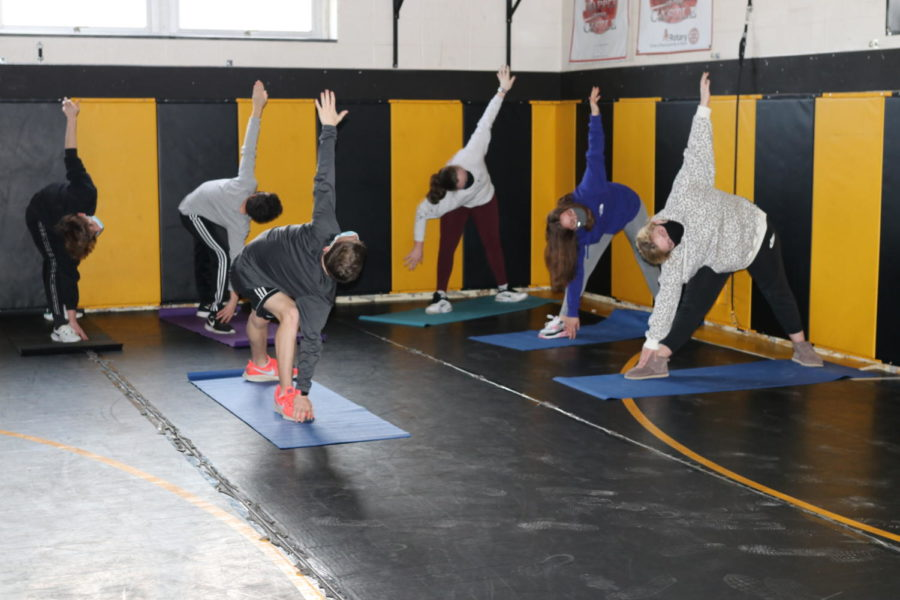 Why YOU Should Consider Getting Certified to Teach Yoga!