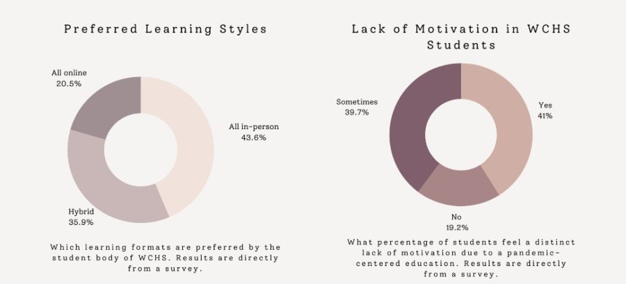 """Infographics of the data collected in the """"Your Education During a Pandemic"""" survey"""