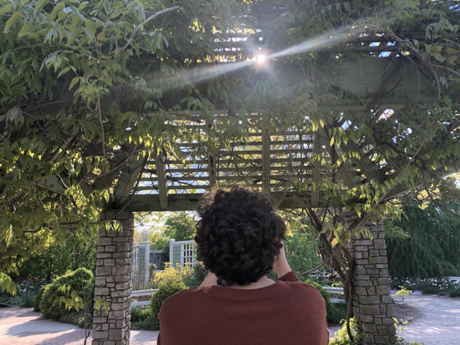 Lily Savage (11) captures a photo of a vine-covered gazebo as the sun peaks out from behind its wooden-slats.