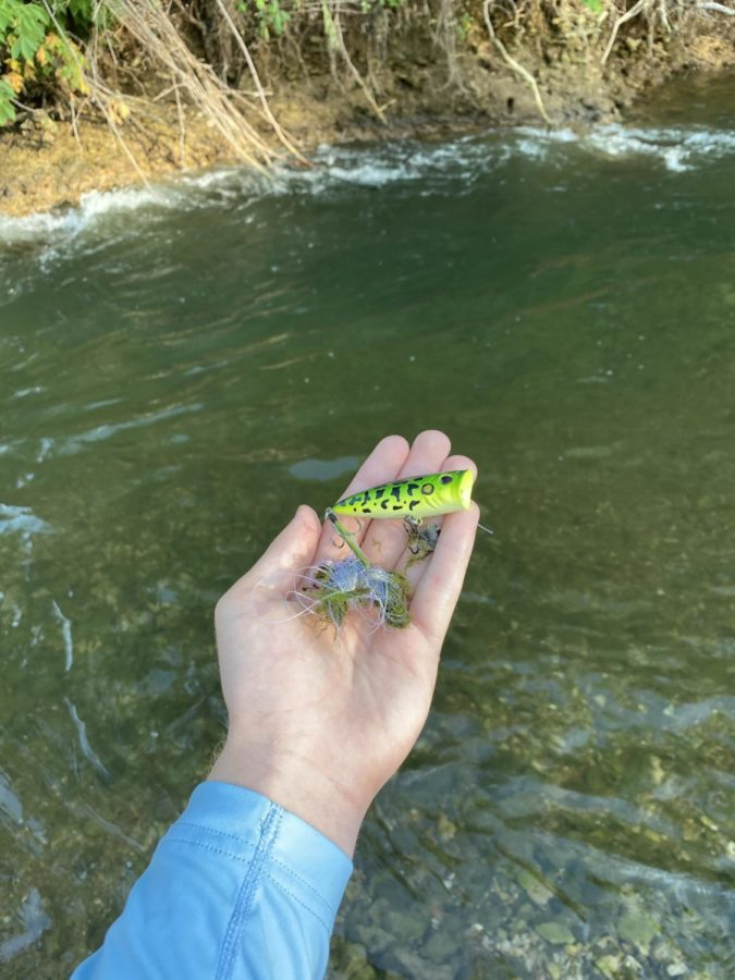 Don't be the person who leaves old line and lures in the water, and if you see it pick it up.